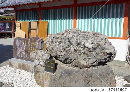 熊本県八代市の妙見宮(八代神社)のさざれ石 37415607