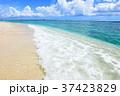 海 ビーチ 波打ち際の写真 37423829