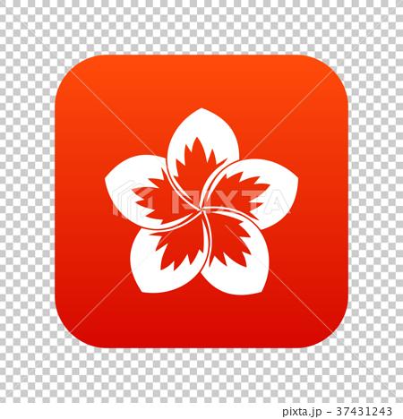 Frangipani flower icon digital red 37431243