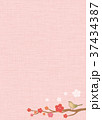 梅 鶯 春のイラスト 37434387