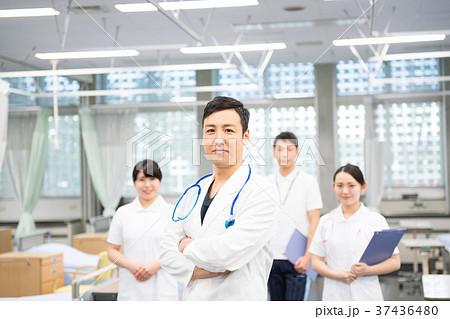 医療スタッフ、働く人々、医師、看護師、介護士、トレーナー 37436480
