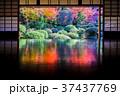 京都安楽寺の紅葉 37437769