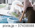 ゴミ捨て  37438088