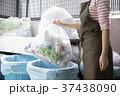 ゴミ捨て  37438090