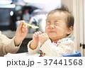 離乳食 育児 赤ちゃんの写真 37441568