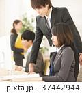 ビジネス ビジネスウーマン ビジネスマンの写真 37442944