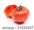 ファーストトマト(愛知県産) 37444207