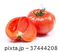 ファーストトマト(愛知県産) 37444208