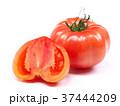 ファーストトマト(愛知県産) 37444209