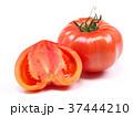 ファーストトマト(愛知県産) 37444210