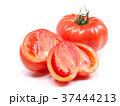 ファーストトマト(愛知県産) 37444213