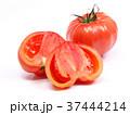 ファーストトマト(愛知県産) 37444214
