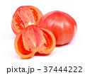 ファーストトマト(愛知県産) 37444222