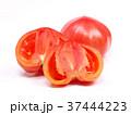 ファーストトマト(愛知県産) 37444223