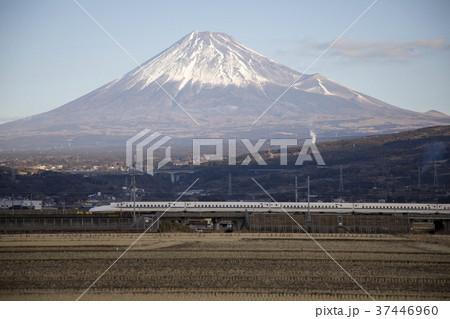 静岡県富士市 富士山と東海道新幹線 37446960