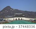 大韓民国ソウル特別市 光化門通りから見た景福宮 37448336