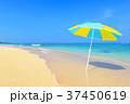 海 ビーチ 砂浜の写真 37450619