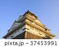 大阪城 城 天守閣の写真 37453991
