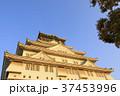 大阪城 城 天守閣の写真 37453996