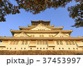 大阪城 城 天守閣の写真 37453997