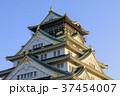 大阪城 城 天守閣の写真 37454007