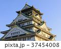 大阪城 城 天守閣の写真 37454008