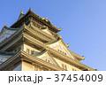 大阪城 城 天守閣の写真 37454009