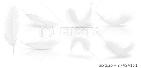 Vector realistic 3d set of white bird feathers 37454151