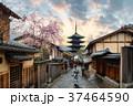 日本 春 泉の写真 37464590