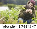 農業 野菜 収穫 外国人男性 37464647