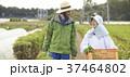 農家の女性と外国人男性 37464802