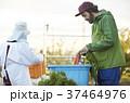 男性 外国人 農家の写真 37464976