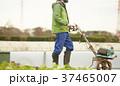 農業 耕運機 外国人男性 37465007