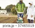 人物 農家 農業の写真 37465019