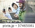 農業 苗 タブレットを見る女性と外国人男性 37465081