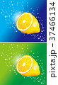 レモン 泡 果物のイラスト 37466134