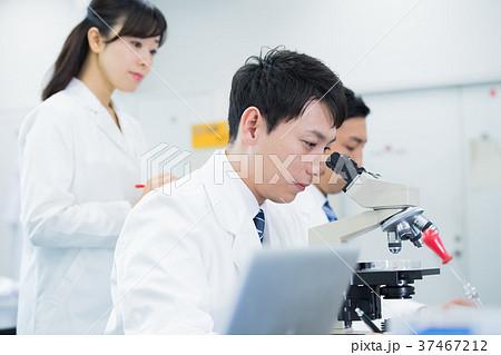 研究者、研究室、科学、実験、顕微鏡 37467212