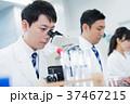 研究 研究者 顕微鏡の写真 37467215