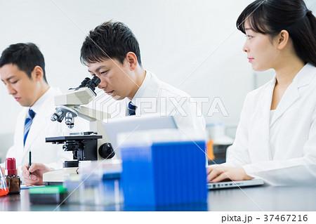 研究者、研究室、科学、実験、顕微鏡 37467216