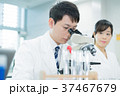 研究 研究者 顕微鏡の写真 37467679