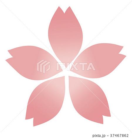 桜の花(一つ) 37467862