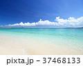 海 ビーチ 青空の写真 37468133
