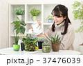 植物女子 37476039