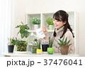 植物女子 37476041