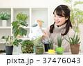 植物女子 37476043