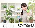 植物女子 37476048