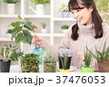 植物女子 37476053