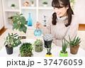 植物女子 37476059