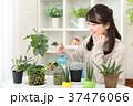 植物女子 37476066