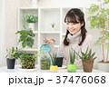 植物女子 37476068